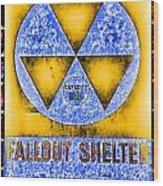 Fallout Shelter Wall 3 Wood Print
