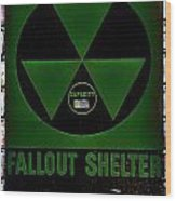 Fallout Shelter Wall 4 Wood Print