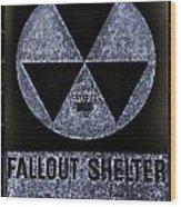 Fallout Shelter Wall 5 Wood Print