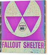 Fallout Shelter Wall 6 Wood Print