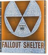 Fallout Shelter Wall 8 Wood Print