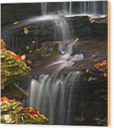 Falls And Fall Leaves Wood Print