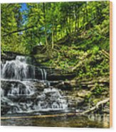 Falls And Steps Wood Print