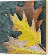 Falls Carpet Wood Print
