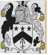 Falls Coat Of Arms Irish Wood Print