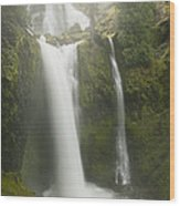 Falls Creek Falls Gifford Pinchot Nf Wood Print