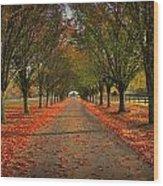 Fall's Driveway Wood Print