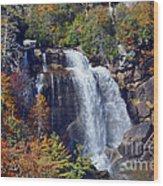 Falls In Fall Wood Print