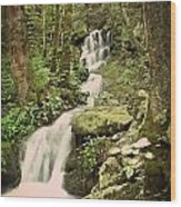 Falls In The Smokies Wood Print