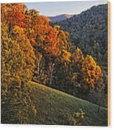 Fall's Mountainside Cascade Wood Print