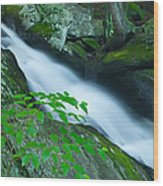 Falls Of Plymouth Wood Print