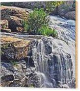 Falls Of Reedy River Wood Print