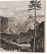 Falls Of The Yosemite Painting Wood Print