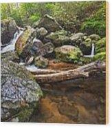Falls On Blood Mountain Creek Wood Print