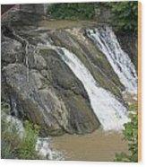 Falls On The Coeyman Creek Wood Print