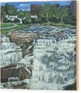 Falls River Park Wood Print