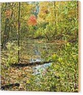Fallscape  Wood Print