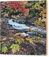 Falltime In Algonquin Wood Print