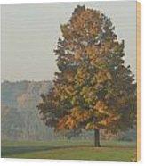 Falltime Wood Print
