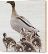 Family Of Ducks Wood Print