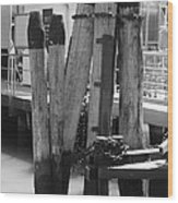 Family Of Pilings Wood Print