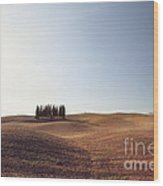 Famous Cypress Grove In Tuscany Wood Print