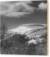 Fan Fawr Brecon Beacons 1 Mono Wood Print