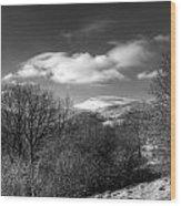Fan Fawr Brecon Beacons 2 Mono Wood Print