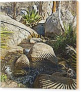 Fan Palm Leaves And Shadows Over Andreas Creek Rocks In Indian Canyons-ca Wood Print