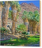 Fan Palms By The Creek In Lower Palm Canyon In Indian Canyons Near Palm Springs-california Wood Print