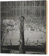 Fancher Davidge 1 Wood Print