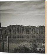 Fancher Davidge 3 Wood Print