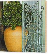 Fancy Gate And Plain Pot Wood Print