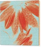 Fancy Schmancy Gerberas Wood Print