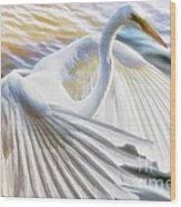 Fancy Wing Dancer  Wood Print