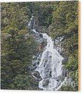 Fantail Falls Wood Print