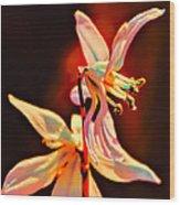 Fantasia Wood Print