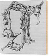Fantastic Alphabet, C1465 Wood Print