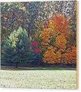 Fantastic Fall Wood Print