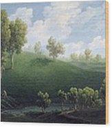 Fantastic Landscape Wood Print