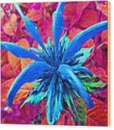 Fantasy Flower 1 Wood Print