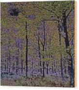 Fantasy Forest Art Wood Print