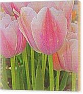 Fantasy In Pink - Tulips Wood Print