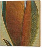 Fantasy Leaf Wood Print