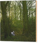Fantasy Squirrel Wood Print