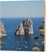Faraglioni In Capri Wood Print