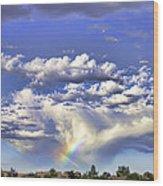 Farewell Rainbow Wood Print