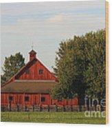 Farm-3582 Wood Print