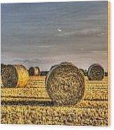 Farm Bales Wood Print