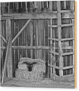 Farm Barn Scene Wood Print